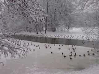 А снег идет (3 видео на тему)